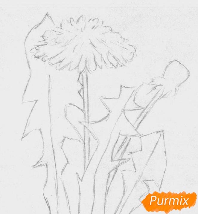 Рисуем одуванчик цветными карандашами - шаг 1