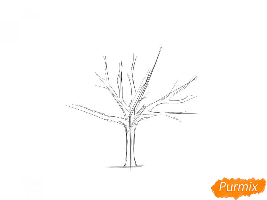 Рисуем ореховое дерево без листьев - шаг 2