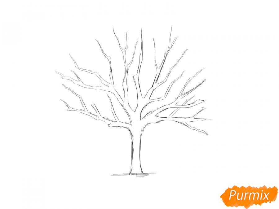 Рисуем ореховое дерево без листьев - шаг 4