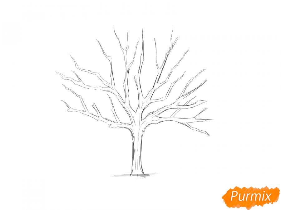 Рисуем ореховое дерево без листьев - шаг 5