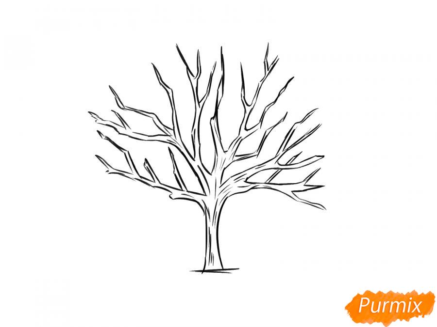 Рисуем ореховое дерево без листьев - шаг 6