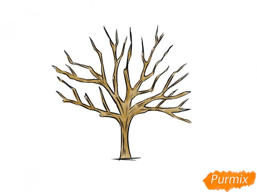 Рисуем ореховое дерево без листьев - шаг 7