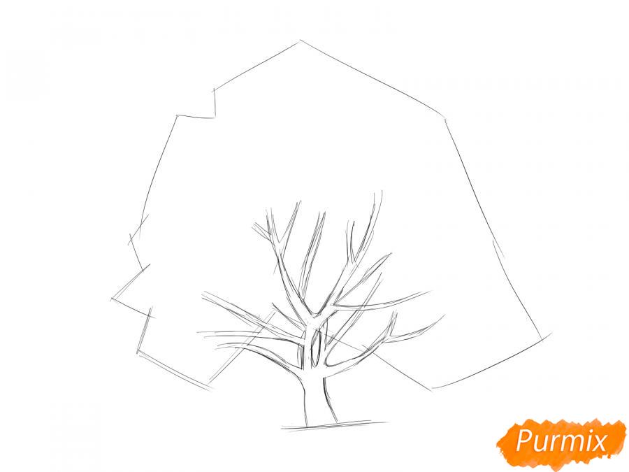 Рисуем ореховое дерево - шаг 4