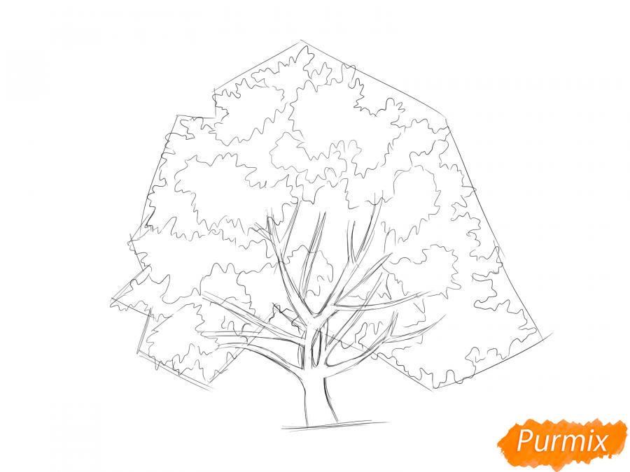 Рисуем ореховое дерево - шаг 5