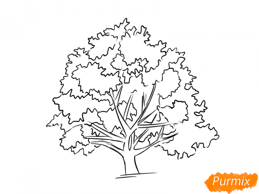 Рисуем ореховое дерево - шаг 6