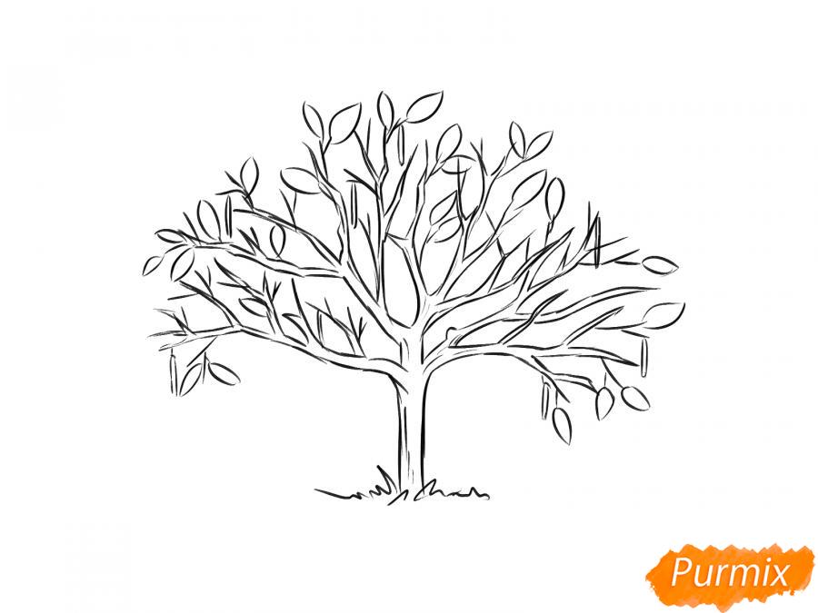 Рисуем ореховое дерево весной - шаг 5