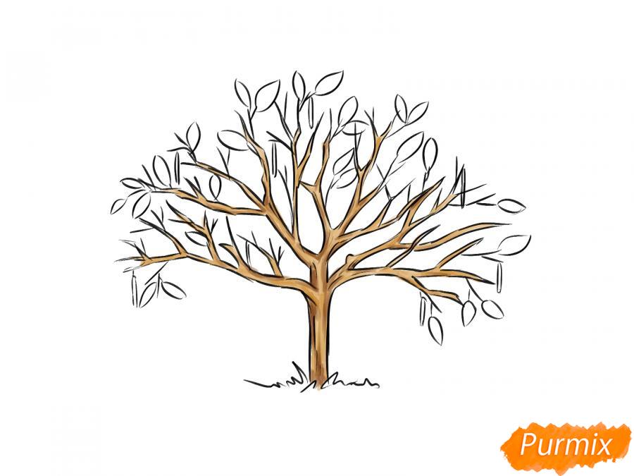 Рисуем ореховое дерево весной - шаг 6