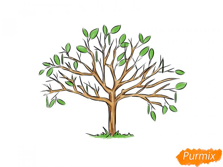 Рисуем ореховое дерево весной - шаг 7