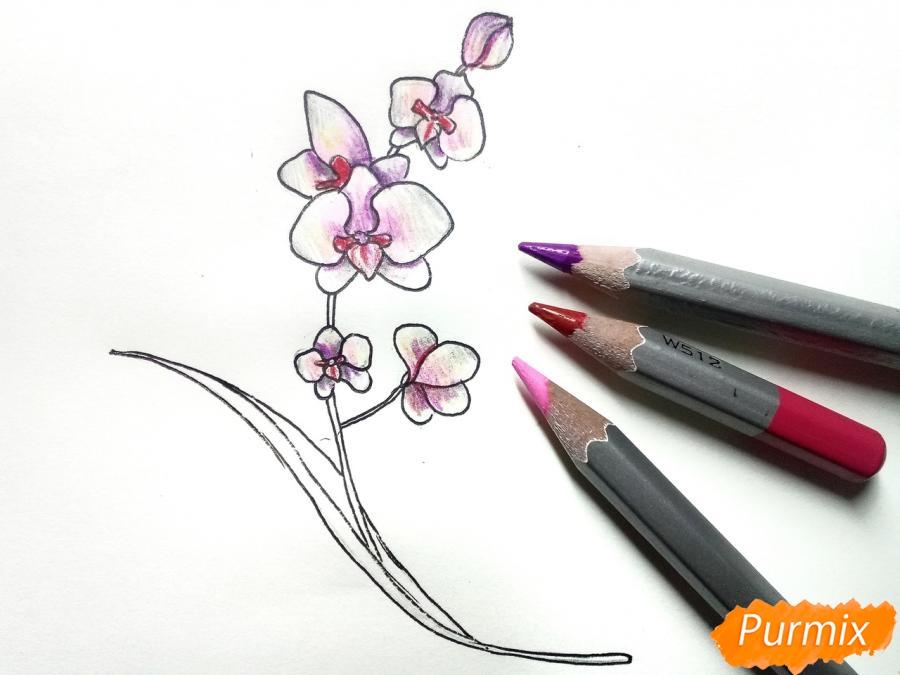 Рисуем веточку орхидеи для детей - шаг 6