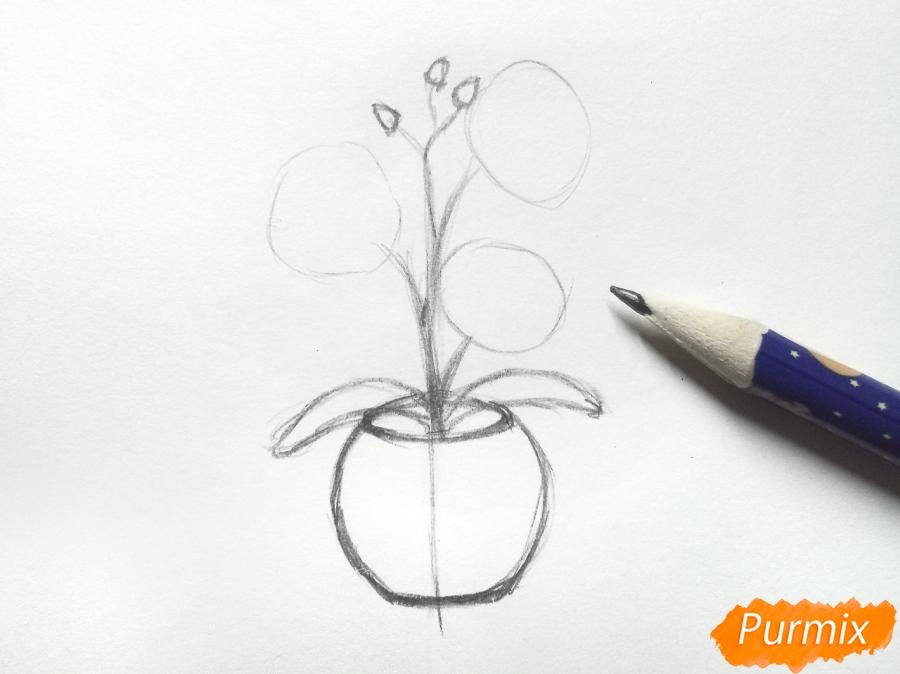 Рисуем орхидею в горшке - шаг 3