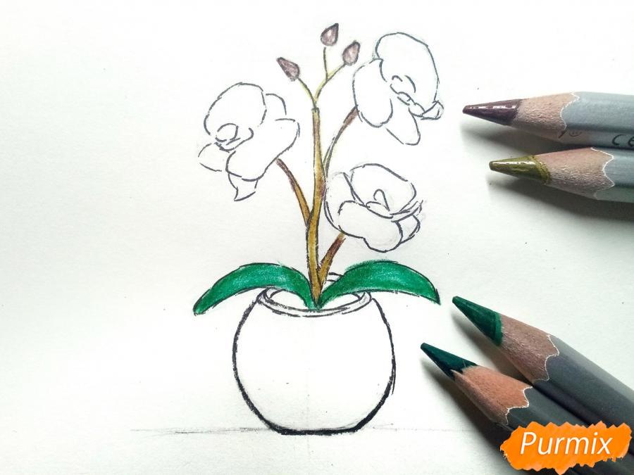 Рисуем орхидею в горшке - шаг 6