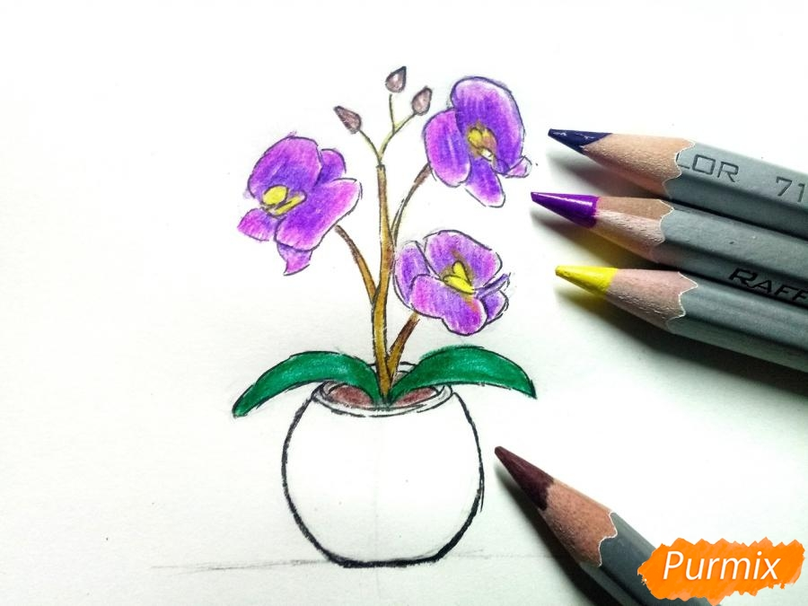Рисуем орхидею в горшке - шаг 7