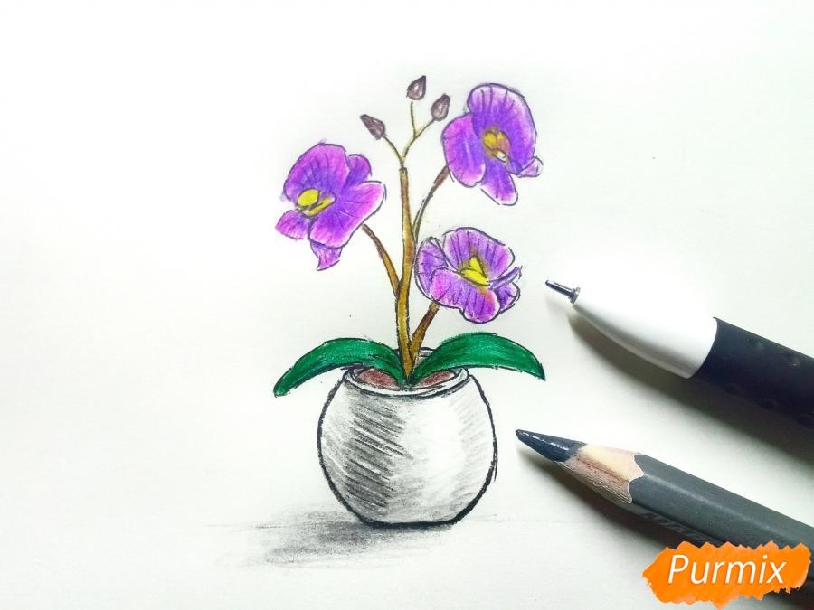 Рисуем орхидею в горшке - шаг 8