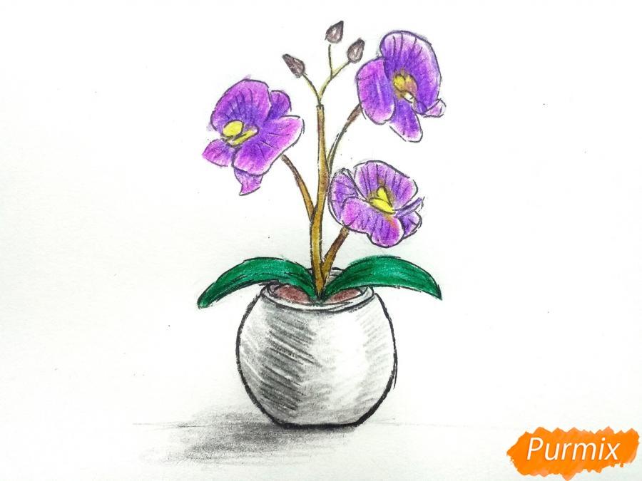 Рисуем орхидею в горшке - шаг 9