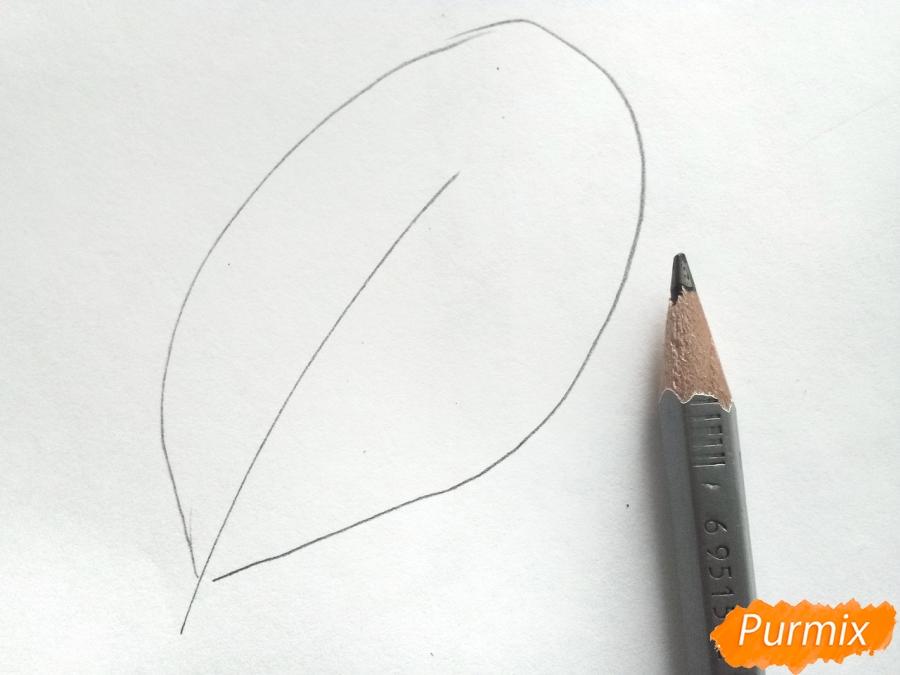 Рисуем осенние листья - шаг 1
