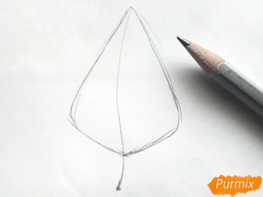 Рисуем осенний березовый лист - шаг 1