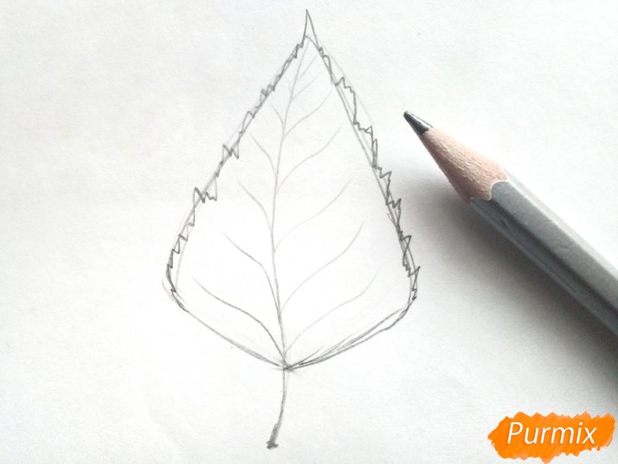 Рисуем осенний березовый лист - шаг 2