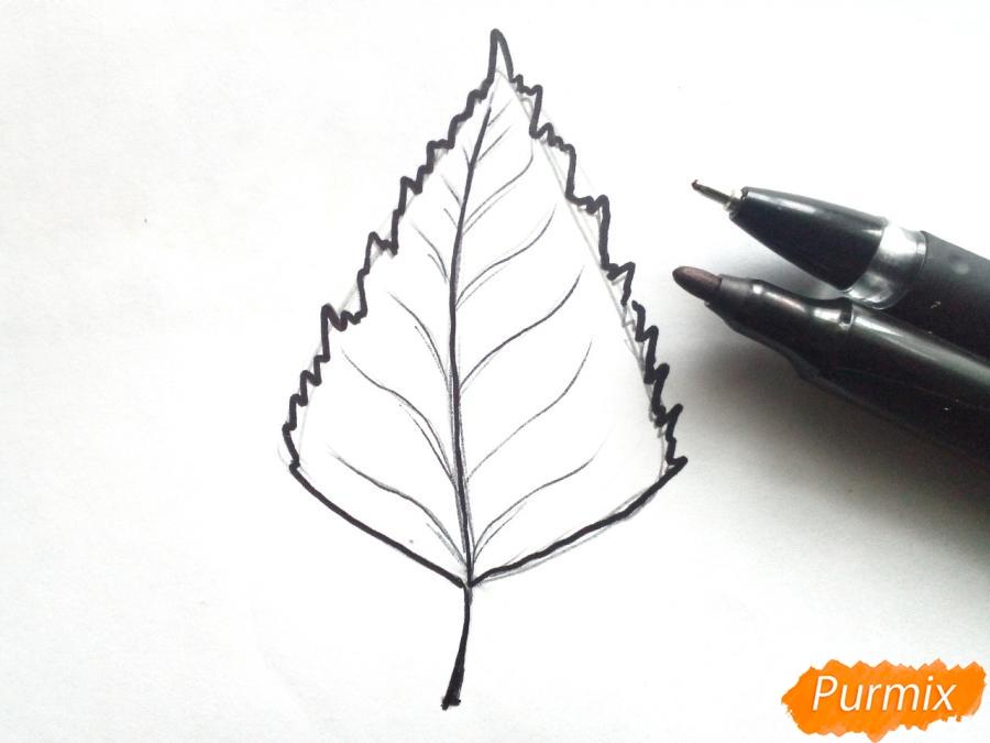 Рисуем осенний березовый лист - шаг 3