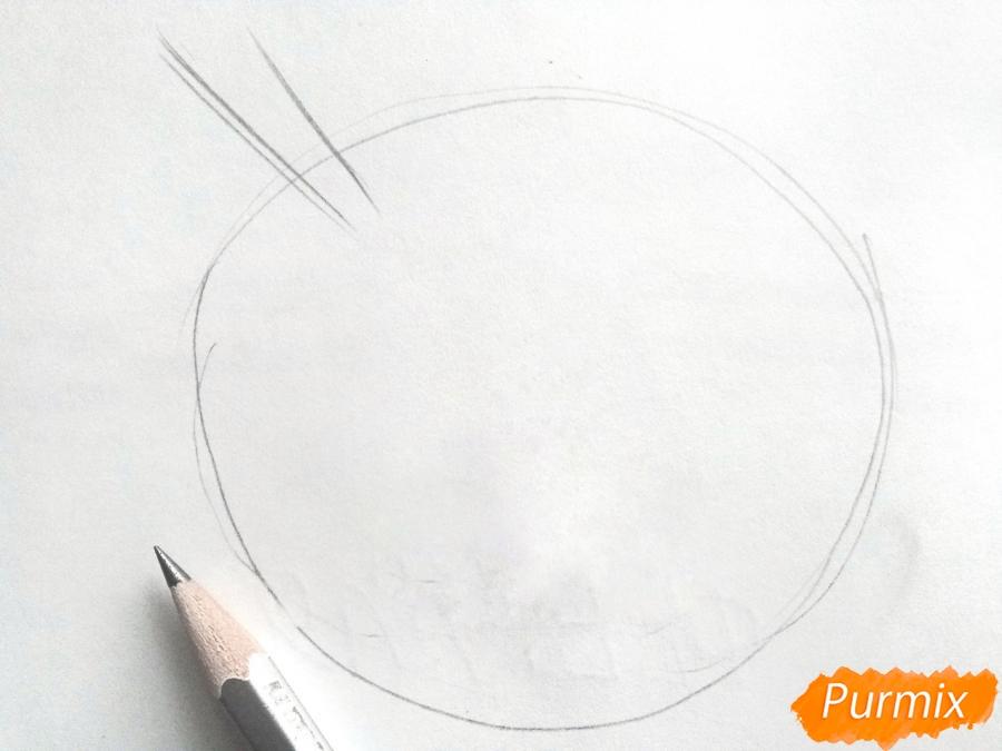 Рисуем осенний букет карандашами - шаг 1