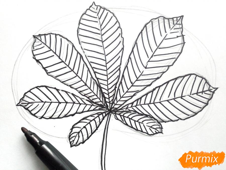 Рисуем осенний лист каштана - шаг 4