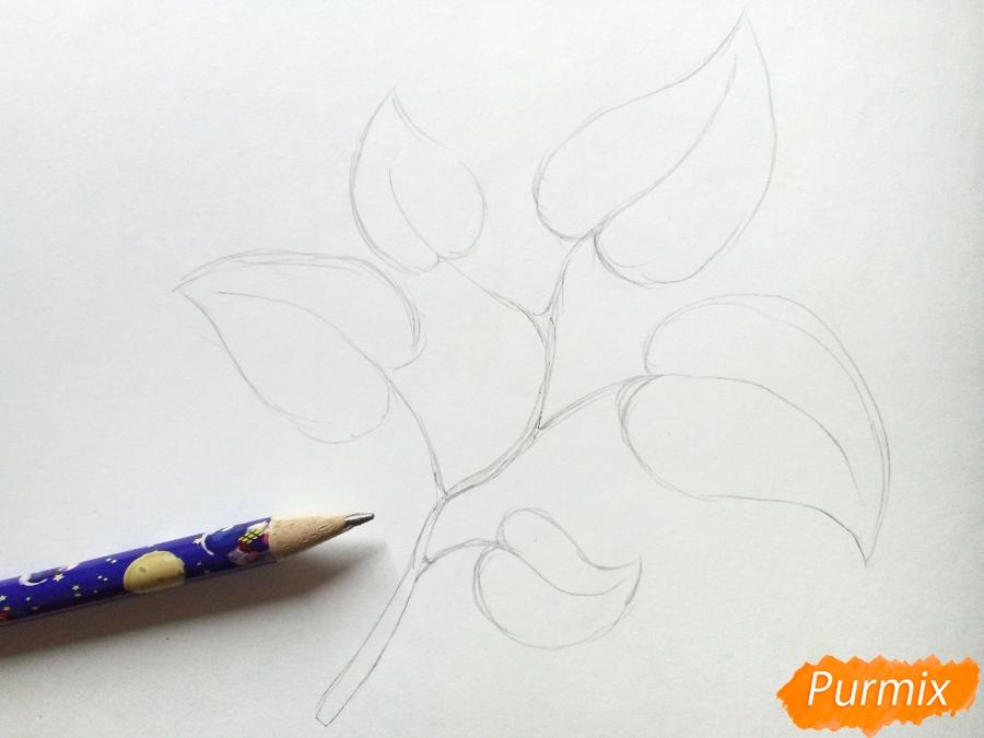 Рисуем осеннюю ветку с листьями - шаг 2