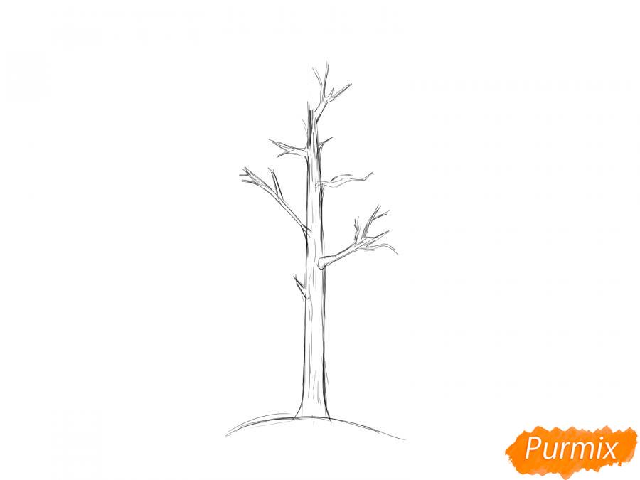 Рисуем осину без листьев - шаг 3