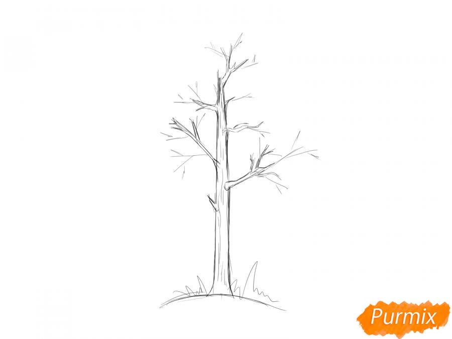 Рисуем осину без листьев - шаг 4