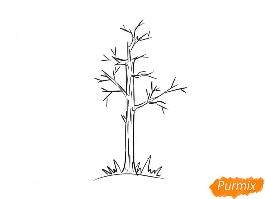 Рисуем осину без листьев - шаг 5