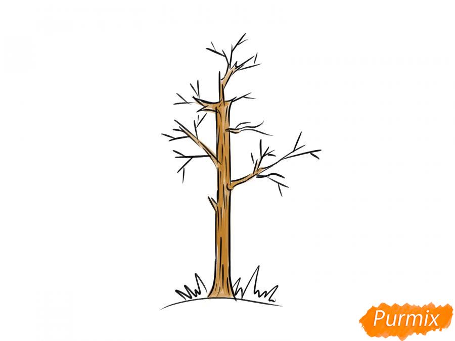 Рисуем осину без листьев - шаг 6