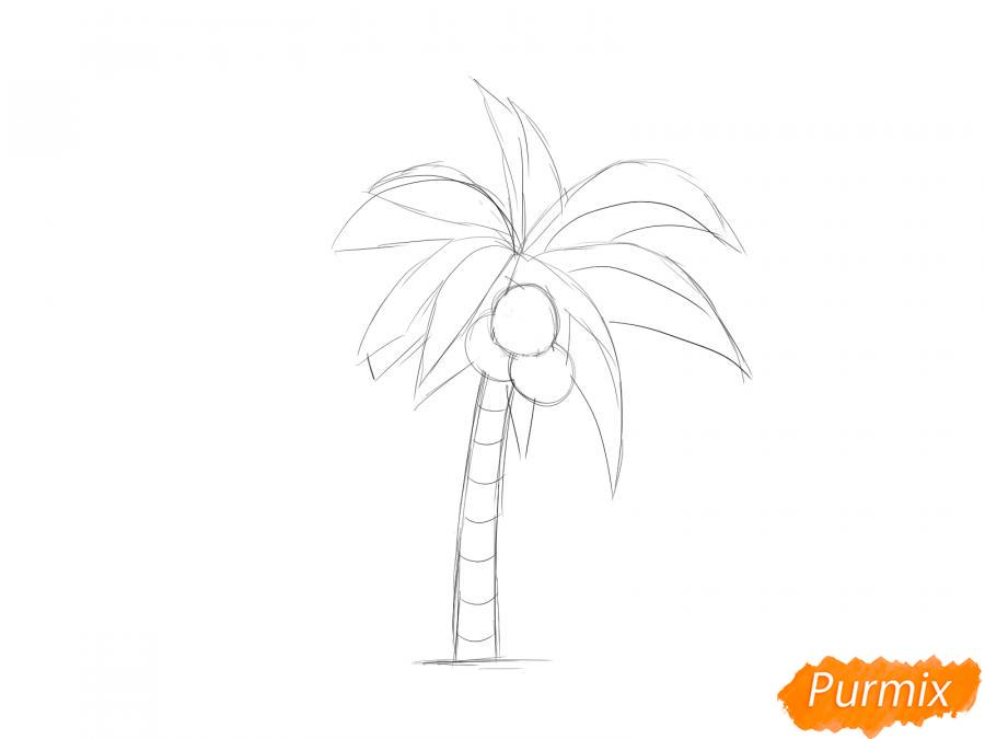 Рисуем пальму с кокосами - шаг 4
