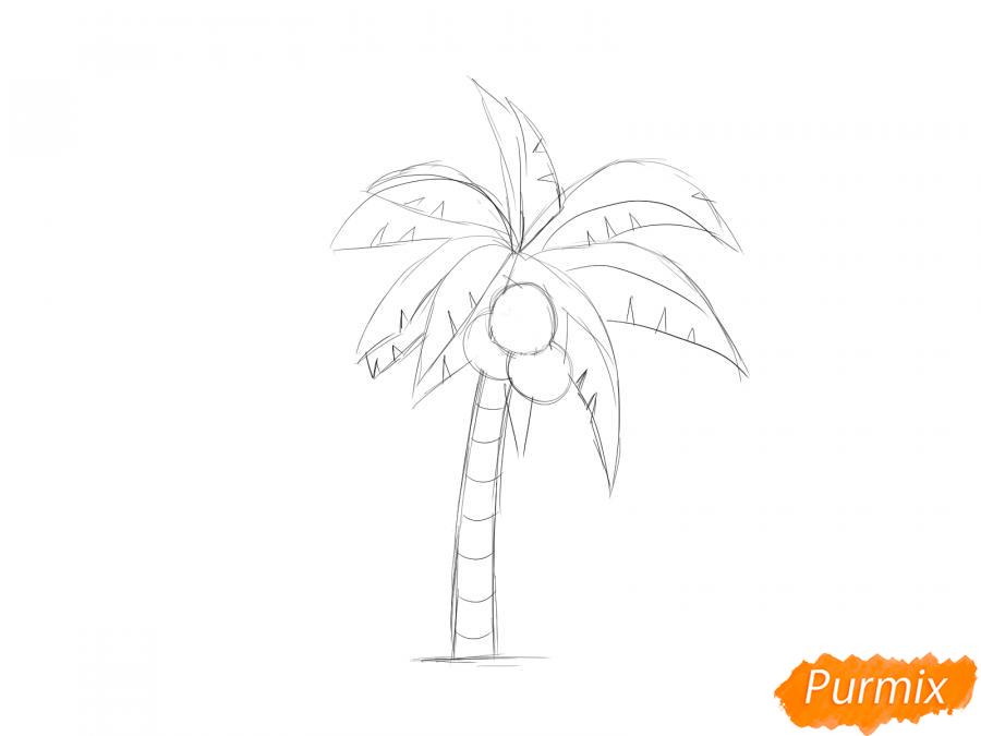 Рисуем пальму с кокосами - шаг 5