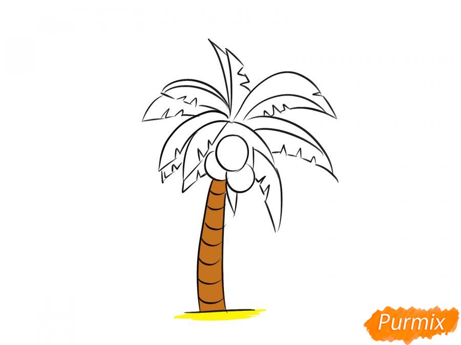 Рисуем пальму с кокосами - шаг 7