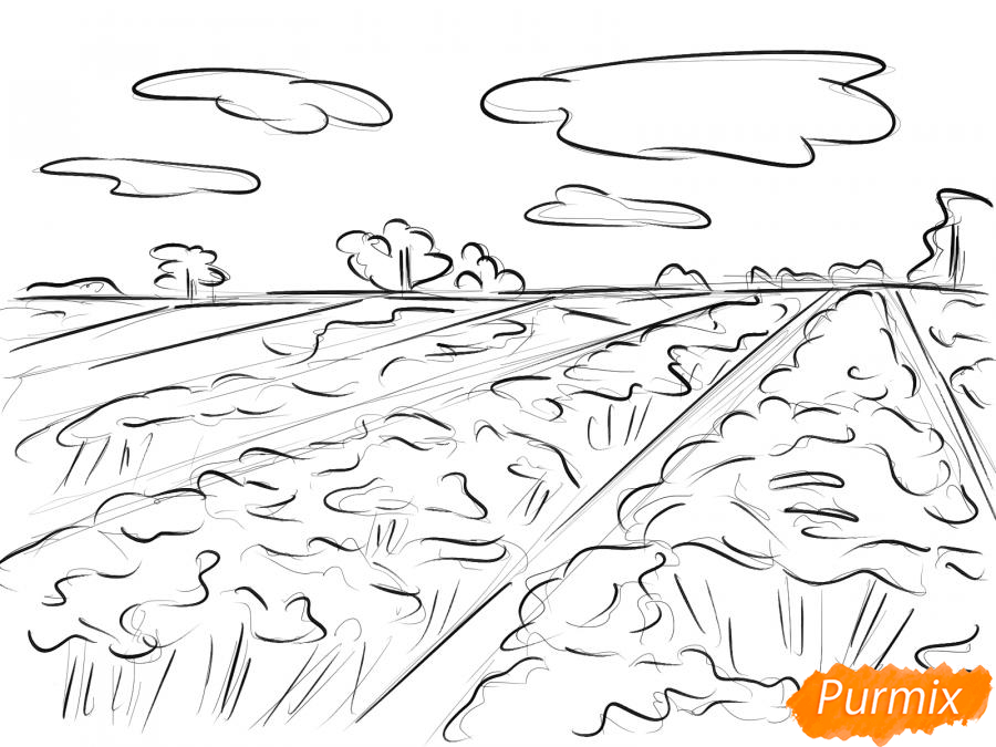 Рисуем поле лаванды - шаг 6