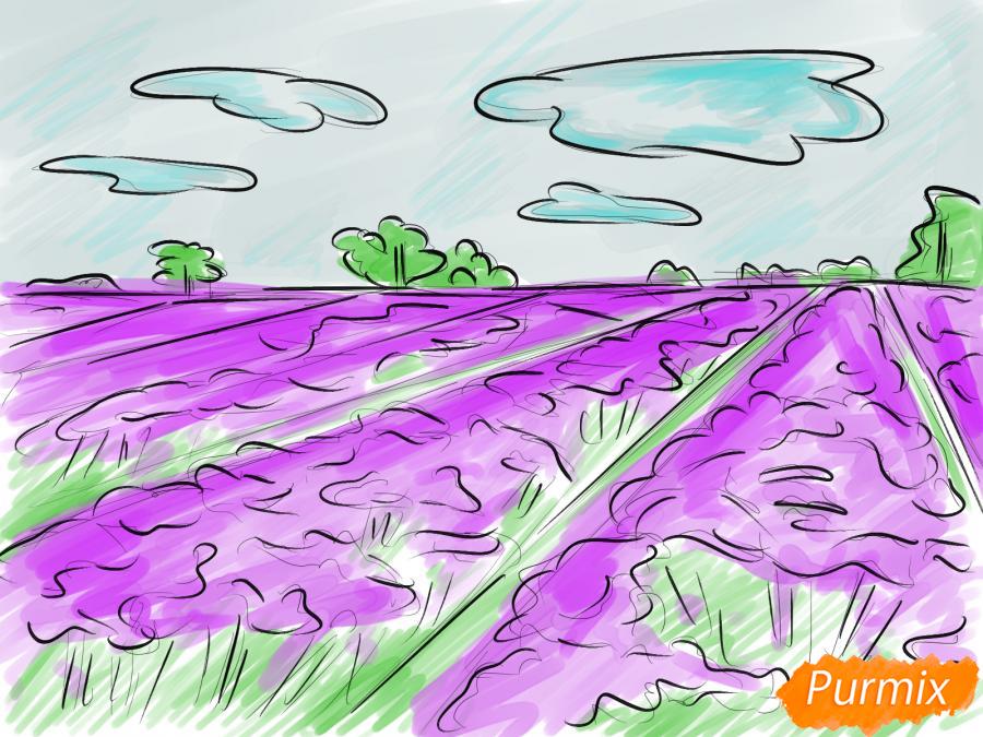 Рисуем поле лаванды - шаг 9