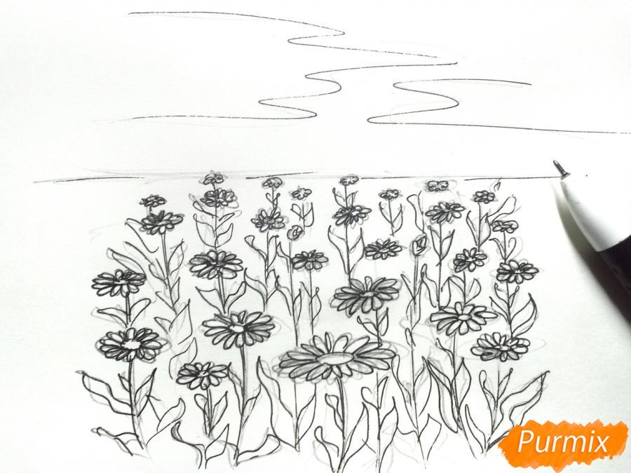 Рисуем поле ромашек карандашами - шаг 4