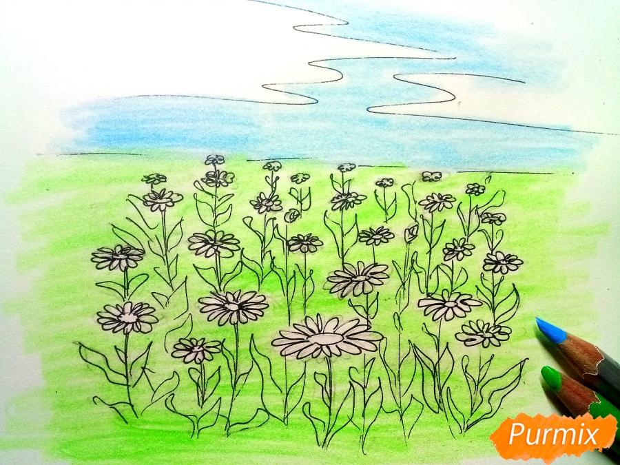 Рисуем поле ромашек карандашами - шаг 5