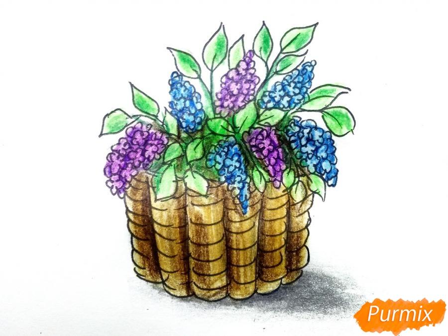 Рисуем сирень в корзине цветными карандашами - шаг 10