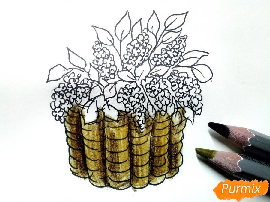 Рисуем сирень в корзине цветными карандашами - шаг 6