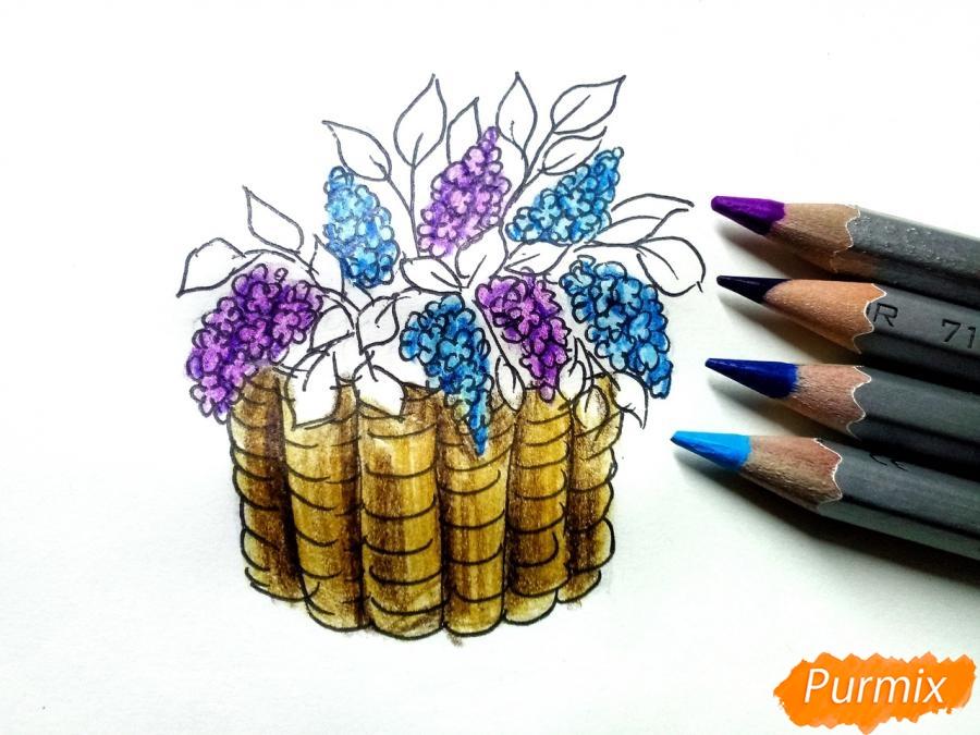 Рисуем сирень в корзине цветными карандашами - шаг 7