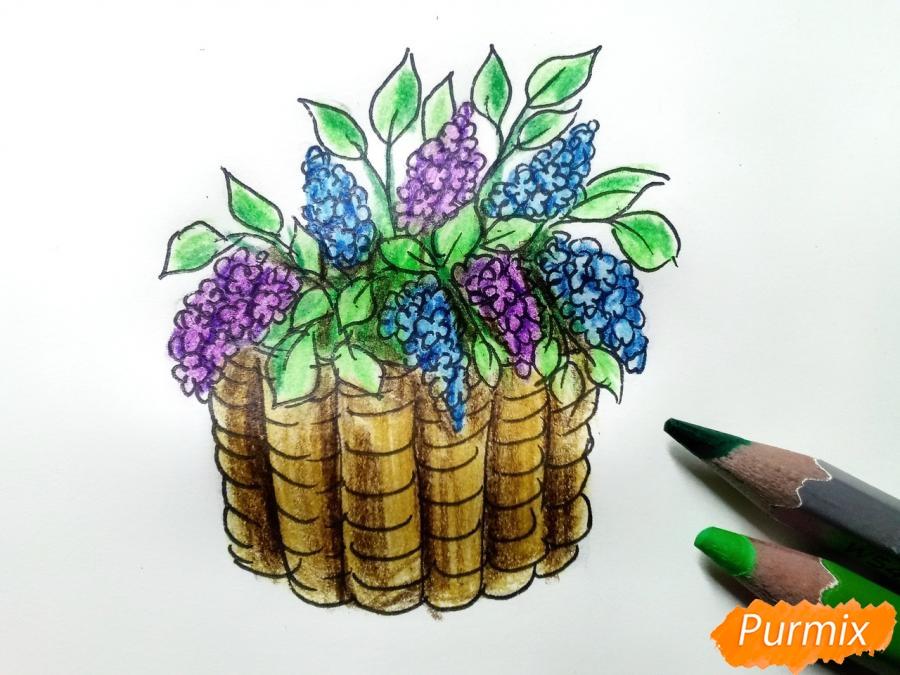 Рисуем сирень в корзине цветными карандашами - шаг 8