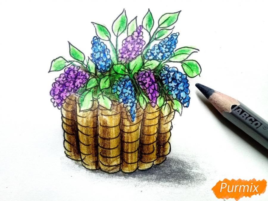 Рисуем сирень в корзине цветными карандашами - шаг 9
