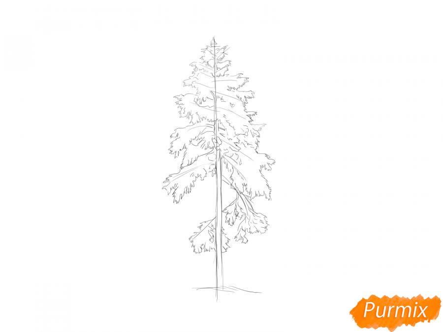 Рисуем сосну зимой - шаг 5