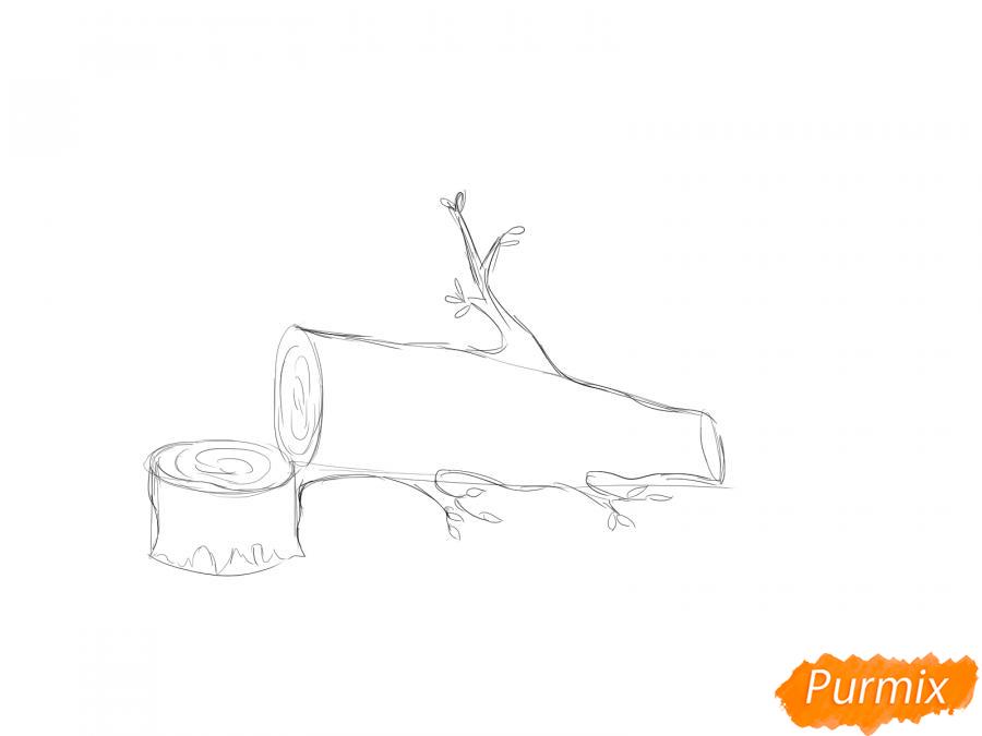 Рисуем спиленное дерево - шаг 3