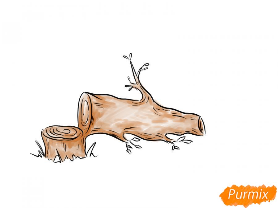Рисуем спиленное дерево - шаг 6