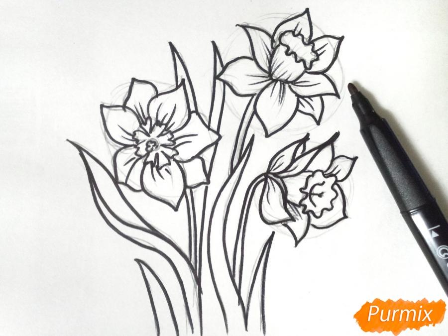 Рисуем Нарциссы - шаг 5