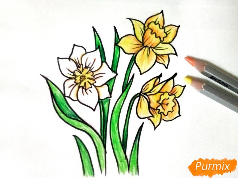 Рисуем Нарциссы - шаг 7