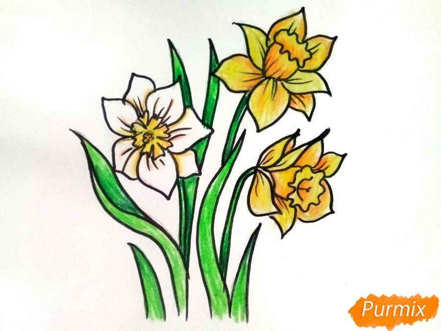 Рисуем Нарциссы - шаг 8
