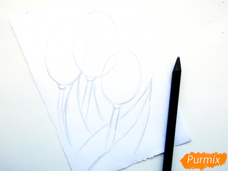 Рисуем три тюльпана цветными карандашами - шаг 2
