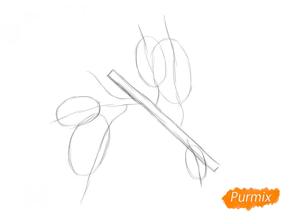 Рисуем ветку абрикоса - шаг 3