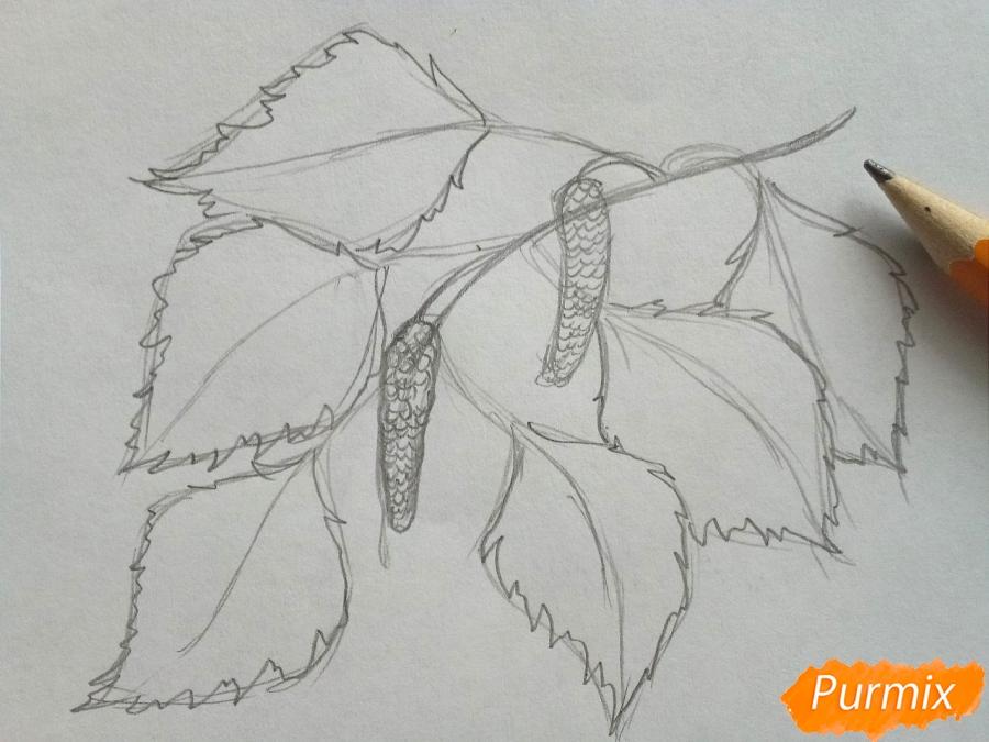 Рисуем ветку березы с листьями - шаг 3